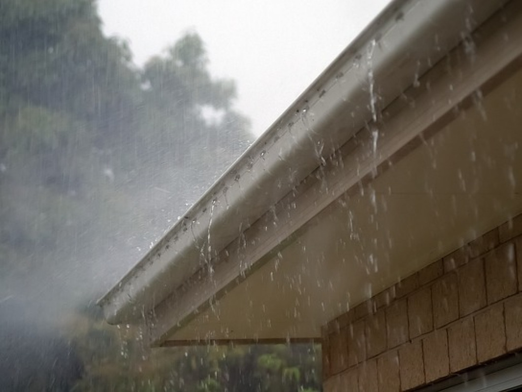 Protect your roof and your gutters